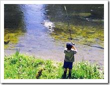 Одежда на летней рыбалке