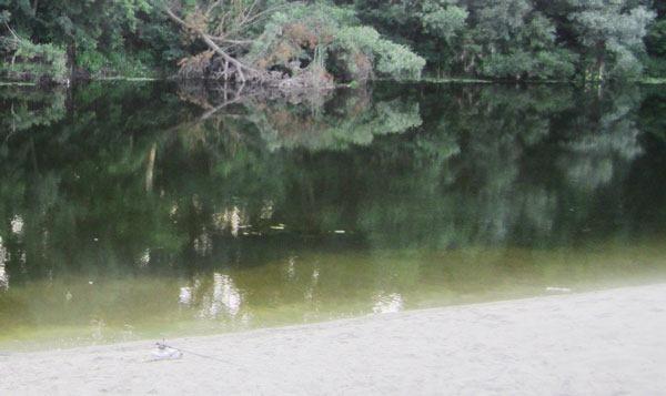 Прозрачная вода. Отмель