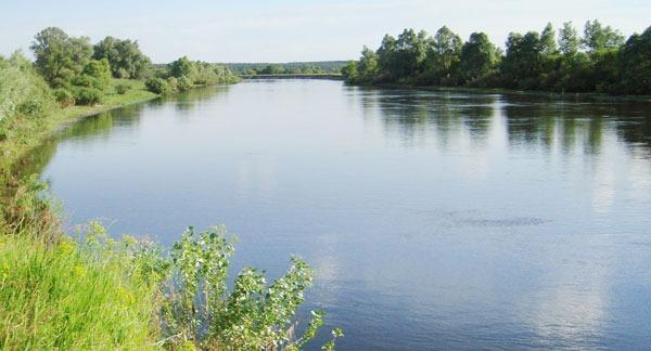 Типичная жереховая река
