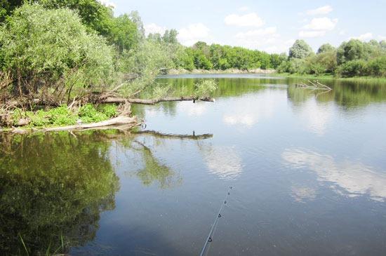 Прибрежная яма на реке
