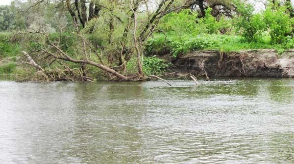 Коряжник на реке. Глубина