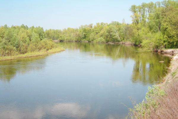 Река. Поищем щуку