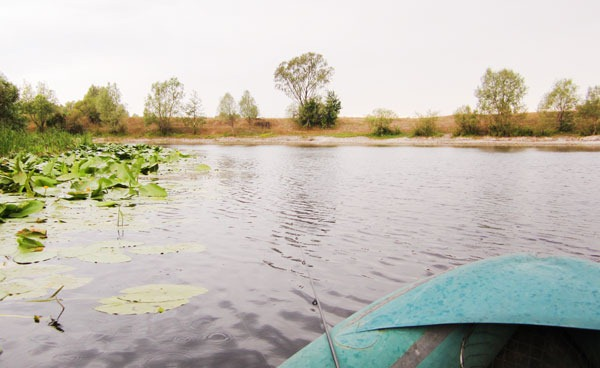 В лодке у полоски кувшинок. Ловим щуку на легкий джиг