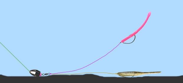 Каролинская оснастка с плавающей и тонущей съедобкой