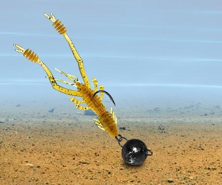 Reins Ring Shrimp во время паузы на дне
