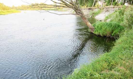 Ниша в береговой линии реки