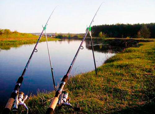 Рыбалка на удочки с берега