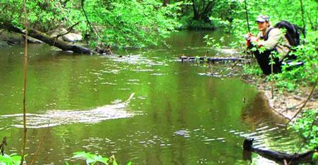 Рыбалка на ручьевую форель