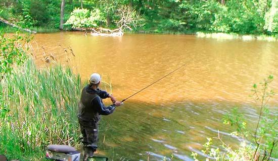 Рыбалка на спиннинг у коряг